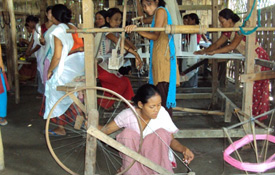 Project Utkarsh- Livelihood Project in Sibsagar