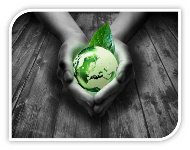 Environment Sustainability Program
