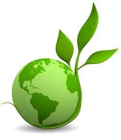 Ensuring Environmental Sustainability