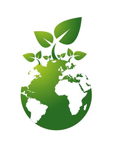 Ensuring Environmental Sustainability Project