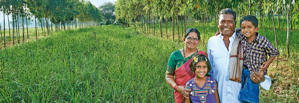 Greening the Wasteland and Reviving Agriculture for the Marginal Farmer