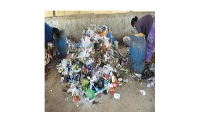 Creating Sustainable Solid Waste Management Solutions for Cleaner, Safer and Beautiful Delhi