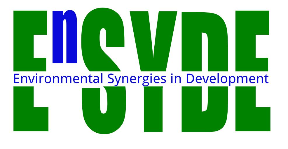Environmental Synergies in Development