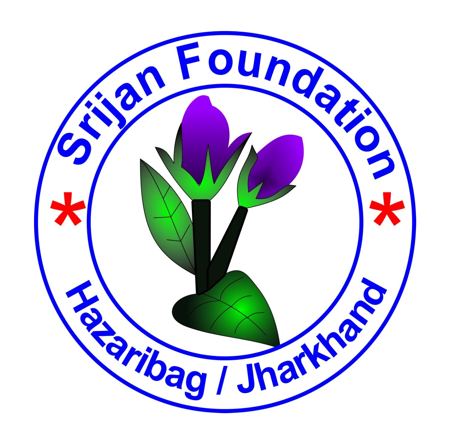 Srijan Foundation